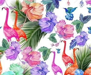 abstract, art work, and flamingos image