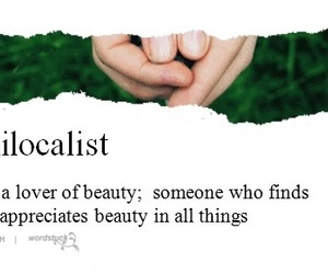 beauty, definition, and dictionary image
