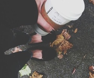 coffee, starbucks, and autumn image