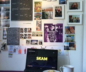 room and skam image
