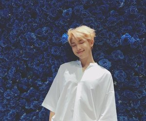 blue, namjoon, and rose image