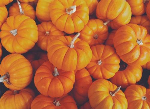 autumn, loveliest autumn, and pumpkins image