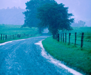 country life, pasture, and back roads image