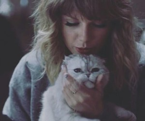 Taylor Swift, blonde, and cat image