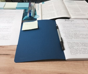 biology, blue, and book image