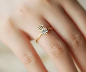 ring, accessories, and bunny image