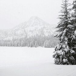 cold, landscape, and nature image