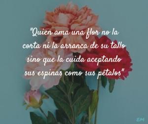 amor, azul, and flor image