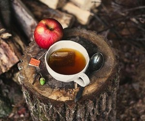 tea, apple, and autumn image
