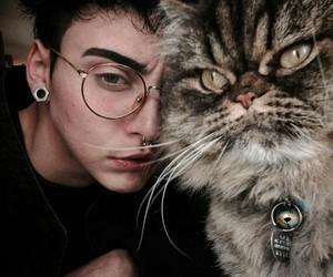 art, emo, and kitty image