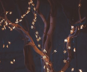 lights and tumblr image