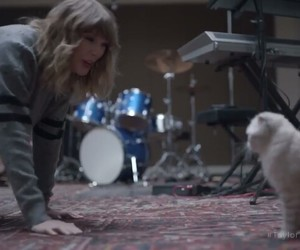 cat, olivia, and Taylor Swift image