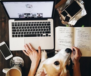dog, book, and coffee image