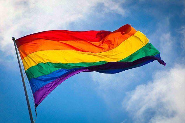 gay, lgbt, and flag image