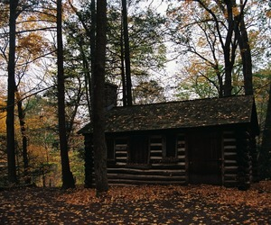 35mm, autumn, and cabin image