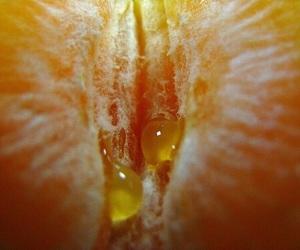 orange and theme image