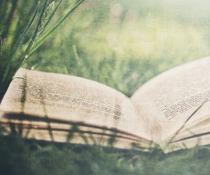 book, grass, and read image
