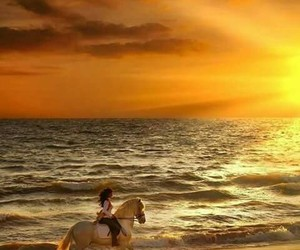 beautiful, woman, and horse image