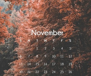 november, wallpaper, and autumn image