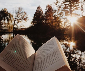 book, tree, and autumn image