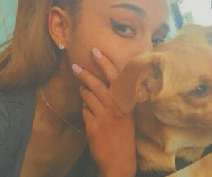 beige, arianagrande, and dog image
