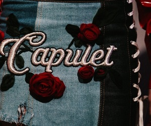 aesthetic, red, and capulet image
