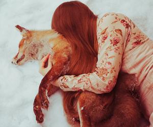 dark, dead, and fox image