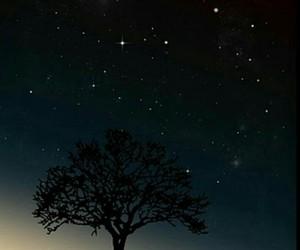 night, stars, and tree image