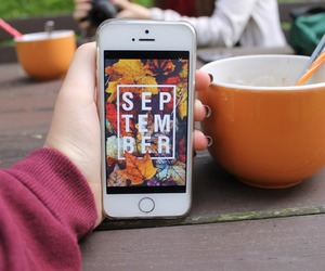 fall, tumblr quality, and tumblr image