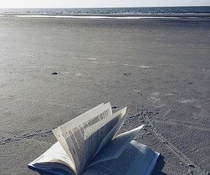 books, libros, and ilovesummer image