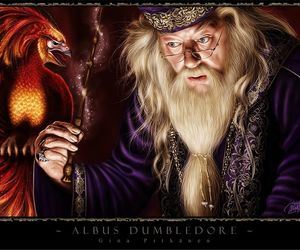 albus dumbledore, fantasy, and harry potter image