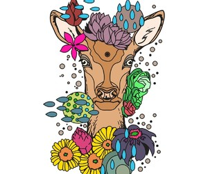 color, deer, and coloring image