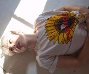 bands, hayley williams, and sunflower image
