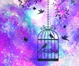 bird cage, bokeh, and galaxy image