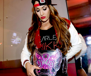 wwe, nikki bella, and the bella twins image