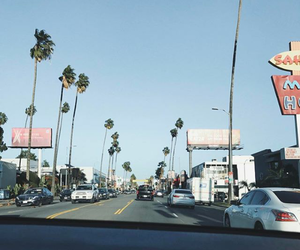 blue, palmtrees, and california image