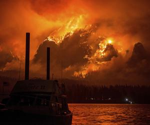 nature, sad, and wildfire image