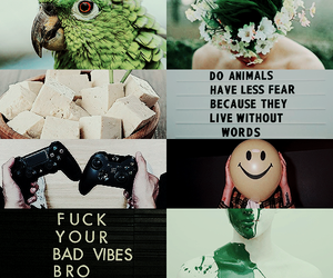 aesthetic and beast boy image
