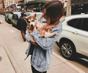 dog, girl, and animals image