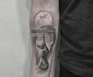arm, beautiful, and elephant image