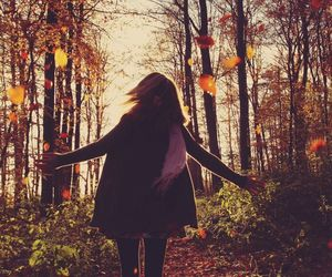 autumn, wallpaper, and autumn leaves image