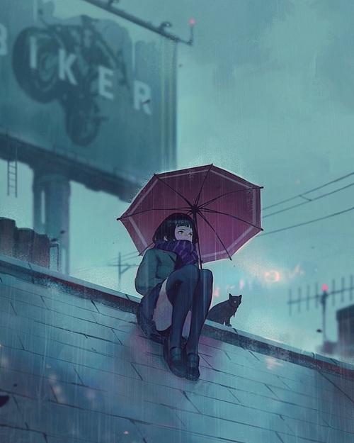 rain, cat, and anime image