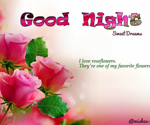 good night quotes, good night love, and good night sms image