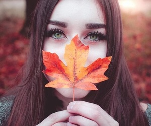 beauty, leaves, and autumn image