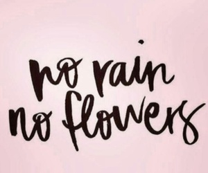 flowers, no, and rain image
