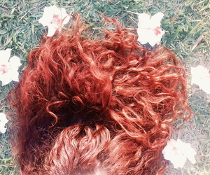 curl, flower, and ginger image