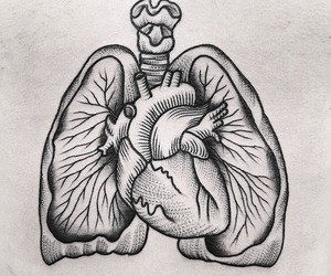 anatomy, lungs, and Tattoos image