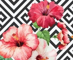 flowers, patterns, and wallpaper image