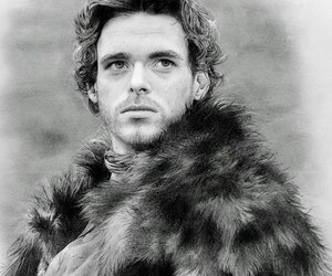 art, richard madden, and sansa stark image