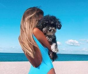 animal, beach, and girl image